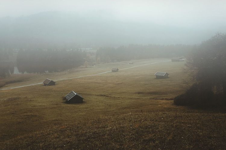 Rainy and peaceful Fog Nature Tranquility Tranquil Scene Landscape No People Beauty In Nature Field Outdoors Car Scenics High Angle View Transportation Day Cold Temperature Winter Tree Rural Scene Sky Grass EyeEmNewHere Landscape_Collection Germany The Great Outdoors - 2017 EyeEm Awards Lost In The Landscape