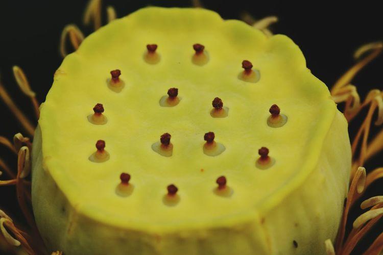 Yellow Dessert