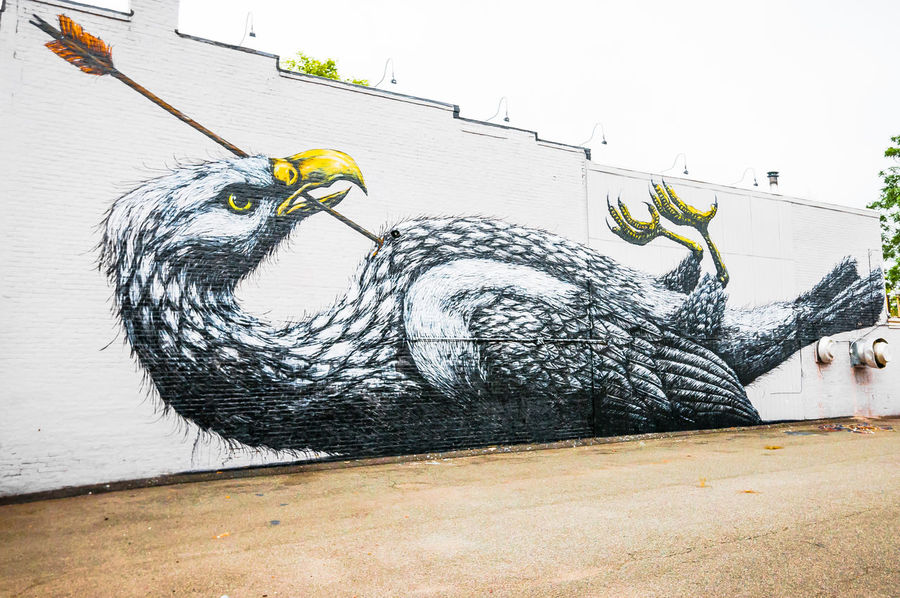 Richmond, VA USA Street Art Arrow Bird Injuredbird Mortally Wounded Richmond, VA Street Art Street Art/Graffiti Street Artist VCU VCU Artists