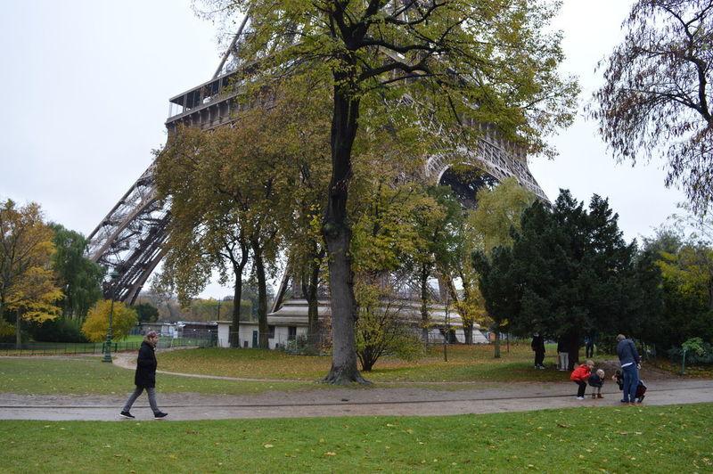 People walking in park against sky