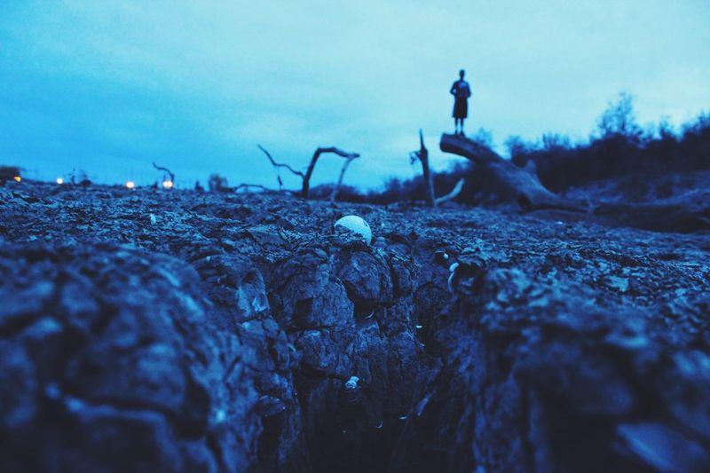 cracks in the world Dry Drought Lake Dried Up Lake Dirt Golf Golfball Silhouette Ground Level View Focus On Foreground Tree San Jose, Ca EyeEm Best Shots EyeEm Nature Lover EyeEm Gallery EyeEm Best Edits EyeEmBestPics