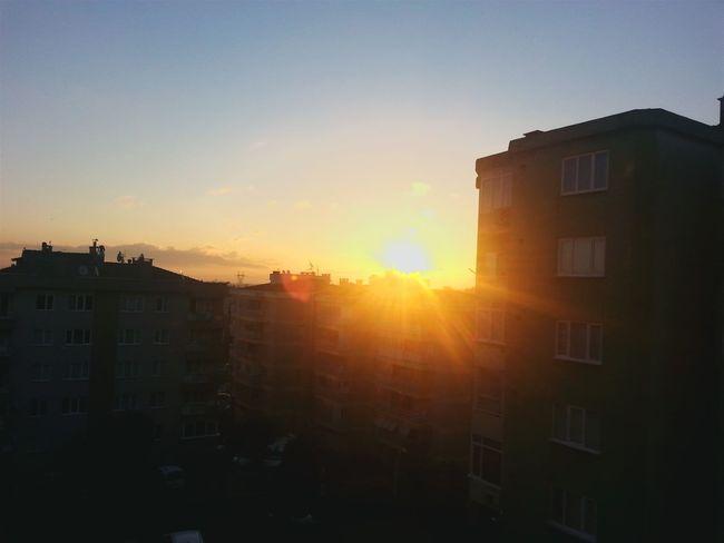 Goodmorning Sun ☀