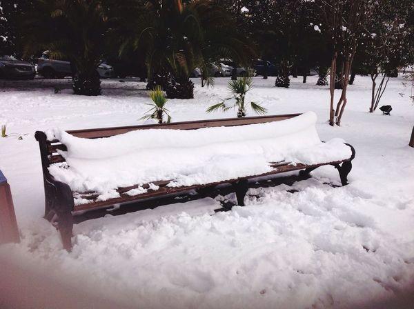 Sochi Winter