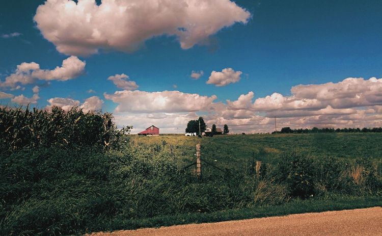 Landscape Tranquility Field Scenics Countryside Mclean County, IL Country Cruise Midwest Living Illinois Summer Farmland Home Is Where The Heart Is Going Home