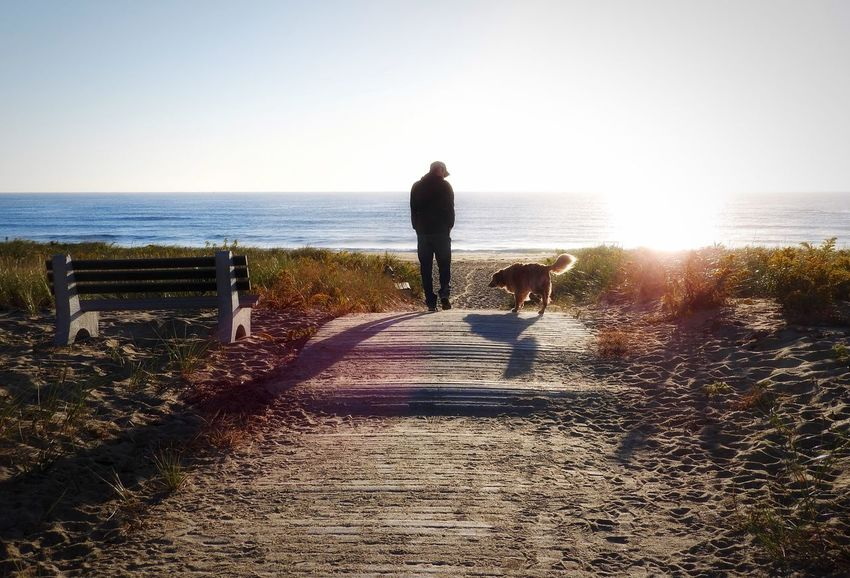 A man and his dog! 😊 Fall Beauty Beautiful Nature Sun_collection Getting Creative Untold Stories EyeEm Nature Lover EyeEm Best Shots Eye4photography  Beachphotography Beach