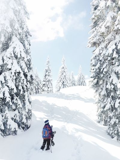 Snow Sports Hiking for Powder Winter Snow Cold Temperature Weather Nature Beauty In Nature Real People One Person Lifestyles Outdoors Leisure Activity Scenics Day Tree Mountain Adventure Sky Shades Of Winter