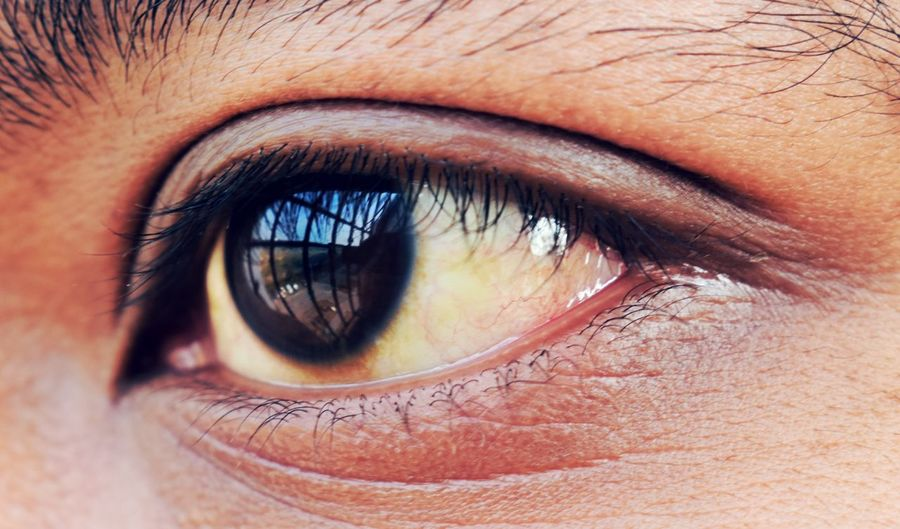 The world only exists in your eyes. You can make it as big or as small as you want Human Eye Eyelash Eyesight Human Body Part Sensory Perception Eyeball Iris - Eye Portrait Adult Eyebrow Real People One Person Human Skin Vision Close-up Day AI Now EyeEm Ready   EyeEm Ready