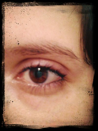 Brown Eye That's Me In My Eye Portrait