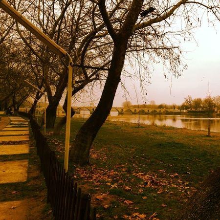 Edirne Meriç Autumn IPhoneography Popular Photos OpenEdit View Turkey Peaceful Nature