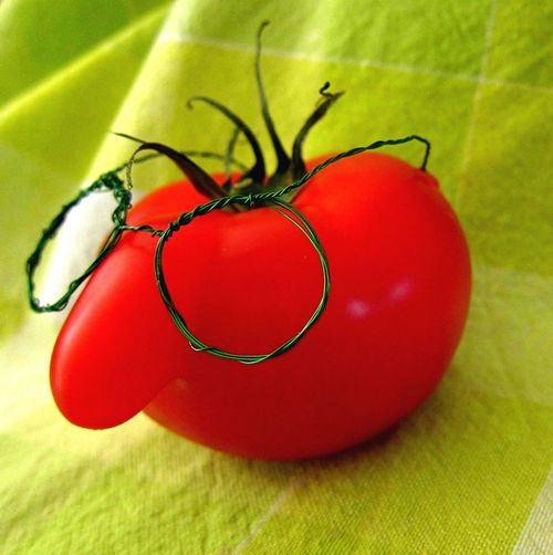 A very fresh selfie BabelFishEye Self Portrait Self Selfie ✌ Tomato Gimme A Smile Funny Funny Faces Creativity From My Point Of View Creative Power Close-up