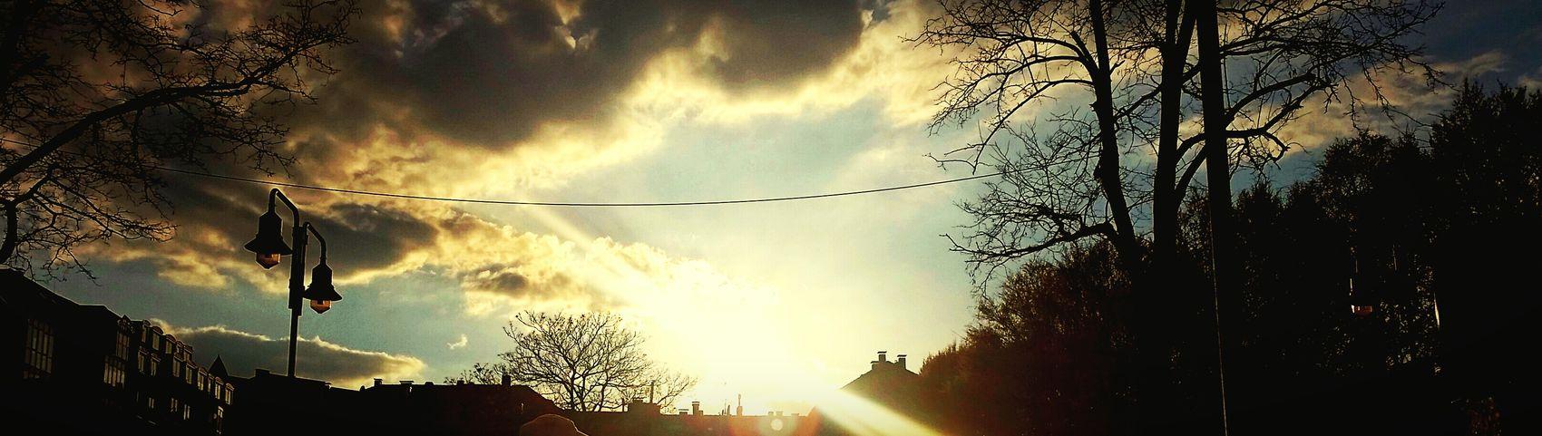 Sunny Goldenhour