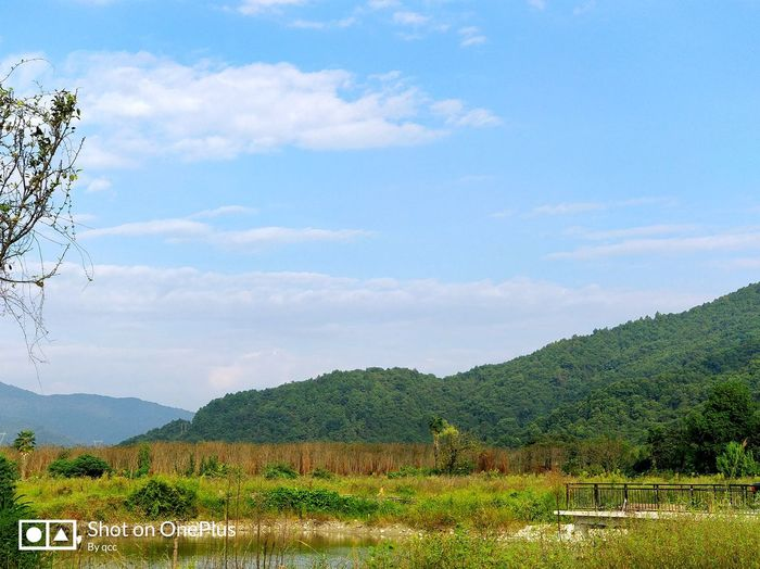 Jing'an Nature Outdoors Sky Beauty In Nature No People Tree Rural Scene Agriculture Landscape Social Issues Cloud - Sky Day Mountain Scenics Grass Irrigation Equipment