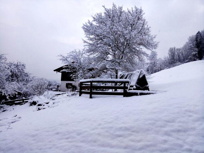 Landscape Landscape House Snow Winter Cold Temperature Sky Deep Snow Countryside Idyllic Powder Snow Non-urban Scene