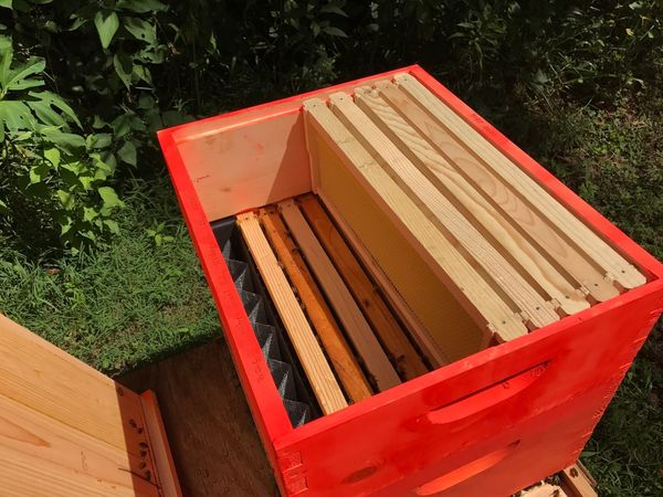 Beehive Wood - Material Box - Container No People Outdoors Nature Honeybees Bees Farm Life