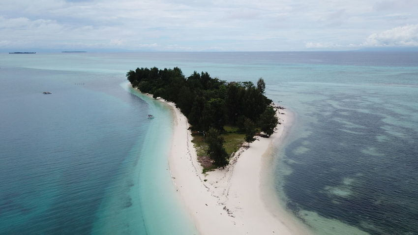 Dodola Kecil Island, Morotai Island Regency, North Maluku (Mollucas) Aerial Shot DJI Mavic Pro DJI X Eyeem Drone  Aerial View Beach Beauty In Nature Day Dji Horizon Over Water Island Landscape Maluku  Maluku Utara Mavic Pro Morotai  Morotaiisland Nature No People Outdoors Sand Scenics Sea Sky Tranquil Scene Tranquility Tree Water
