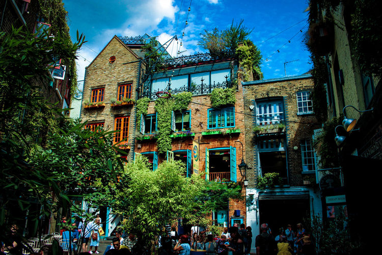 colourful city Nature Urbanphotography Natureandbuilding Art Architecture City EyeEm Best Shots WeekOnEyeEm London City Life Colour Vibrancy Tree Sky Architecture Building Exterior Built Structure Ivy Window Box Overgrown Residential Structure Cloud - Sky Building Residential District