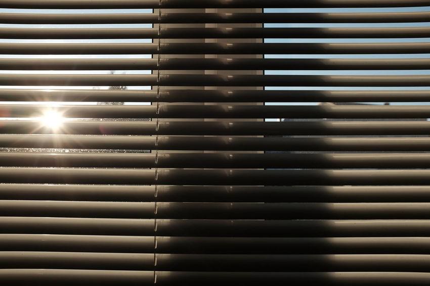 Bureau Close-up Day Enjoying Life Indoors  Jalousie Jalousie Window Light Light And Shadow Silhouette Silhouettes Sun Sunlight Sunlight And Shadow Sunset Window Window View Windows Sommergefühle