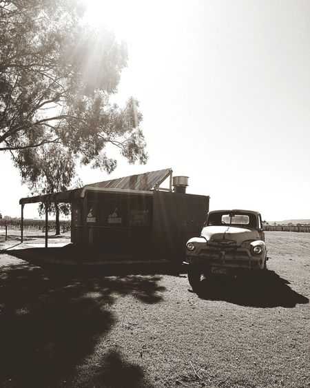 HuaweiP9 Black And White Photography Western Australia Shadows & Light Wineries Winery Photography Winery Memorabilia Swan Valley Western Australia GumTree Eucalyptus Old Truck Shadow Long Shadow - Shadow