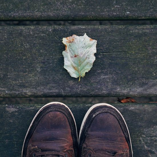 Close-up of shoes on wood with autumn leaf
