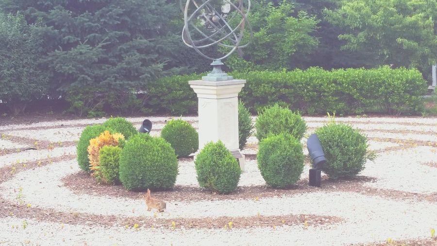 Labrynth Statue