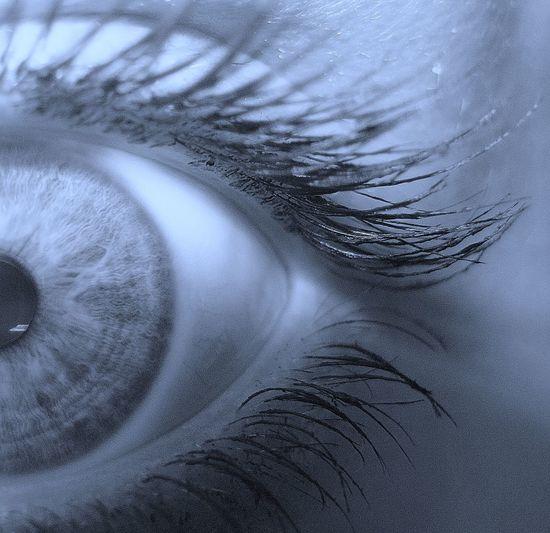 Close-up Cropped Detail Extreme Close-up Eyelash Eyesight Human Eye Macro
