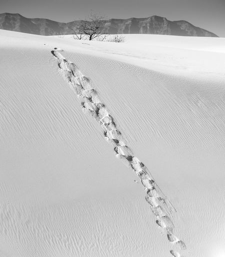 Footprints on snow covered land