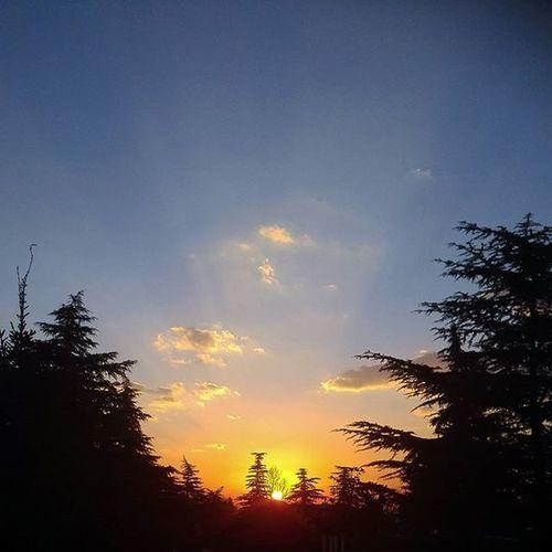 Sunrise Topmobilegraphy Se7en_art صبح_بخیر Morning صبح