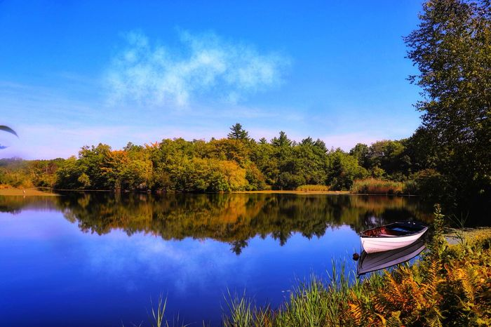 Water Reflection Lake Sky Plant Tree Scenics - Nature Transportation Cloud - Sky Outdoors Day Tranquil Scene Nautical Vessel Growth Beauty In Nature No People Blue Recreational Boat Nature Tranquility