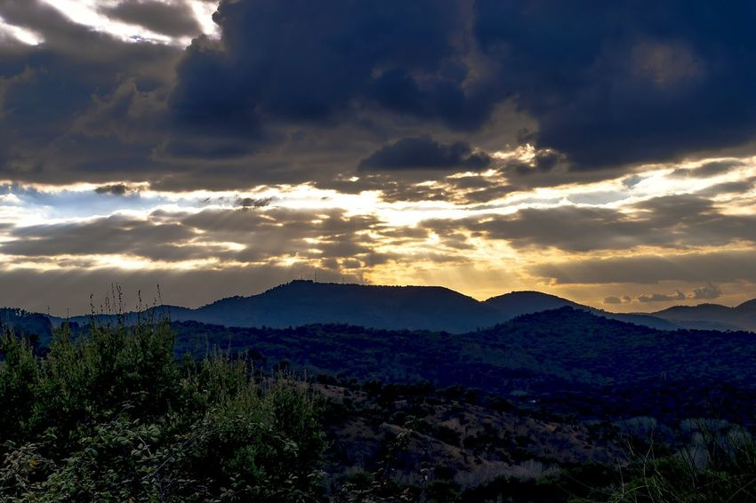 Alájar, Sierra de Aracena (Huelva, España) EyeEm Selects Sunset Sunset_collection Landscape Landscape_Collection Mountain Forest Rural Scene Sky Trees Sunlight Nature Beauty In Nature Cloud - Sky Dramatic Sky Outdoors Sunrays Sunbeam Plant Tranquility EyeEmNewHere EyeEm Best Shots EyeEm Nature Lover EyeEm Gallery Alájar, Sierra De Aracena (Huelva, Spain)