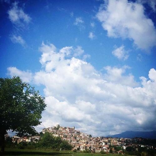 City Tree Cityscape Blue Sky Architecture Building Exterior Cloud - Sky Built Structure Landscape Sky Only