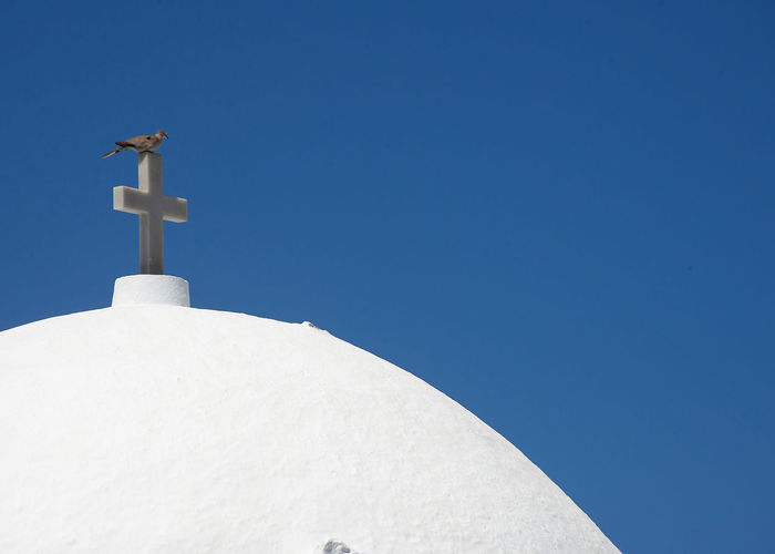 Low angle view of bird perching on church against clear blue sky