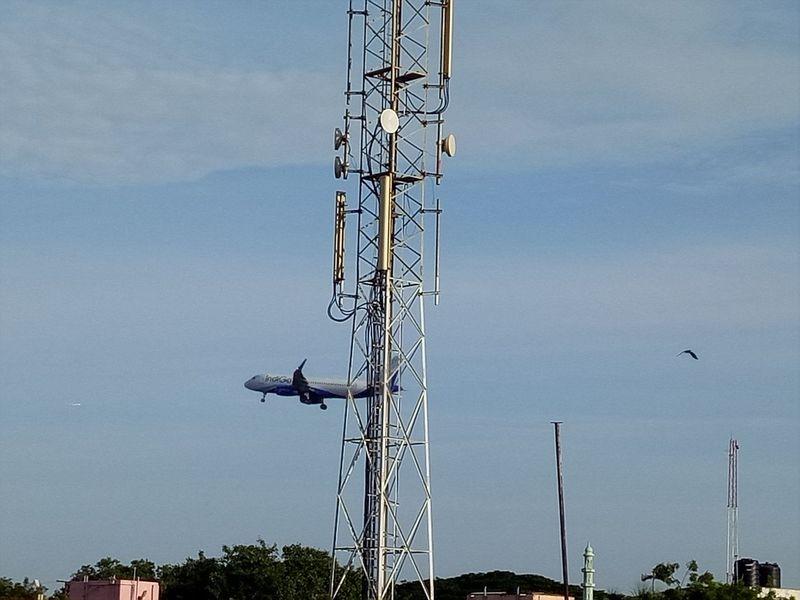 Taking Photos Bird Flight ✈ Tower Alandur Chennai