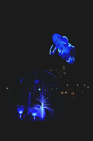 Flying fish Night Lights Light Illumination Fete Des Lumieres