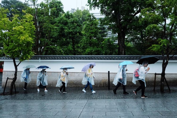 Japan2018 The Street Photographer - 2018 EyeEm Awards Streetphotography Colors Summer Road Tripping The Traveler - 2018 EyeEm Awards FilipinoStreetPhotographers Everydayeverywhere Tree Plant Group Of People Nature Real People Day Men