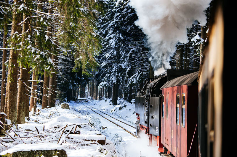 EyeEm Best Shots Steam Sunny Tadaa Community Transportation Beauty In Nature Brockenbahn Cold Temperature Day Frozen Harz Mountain Nature No People Outdoors Scenics Snow Steam Train Tree Weather Winter