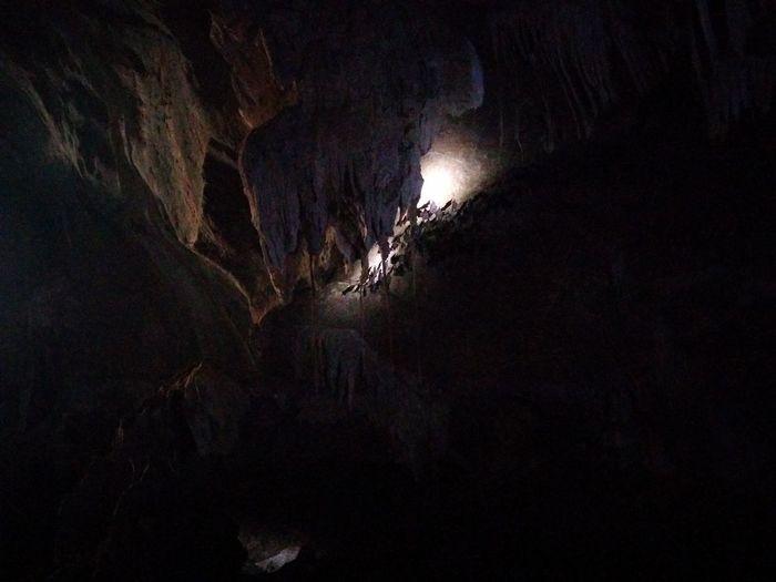 Bat Cave Bats Caves Photography Illuminated Black Animal Mammals No Filters Or Effects