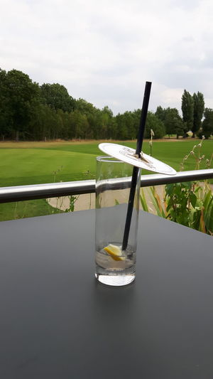 Tree Water Sport Sports Venue Lake Reflection Rural Scene Golf Course Sky Landscape