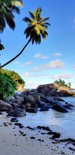 Mahé Seychelles