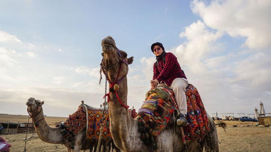 Chinese asian woman tourist riding camel giza pyramid tour destination of egypt