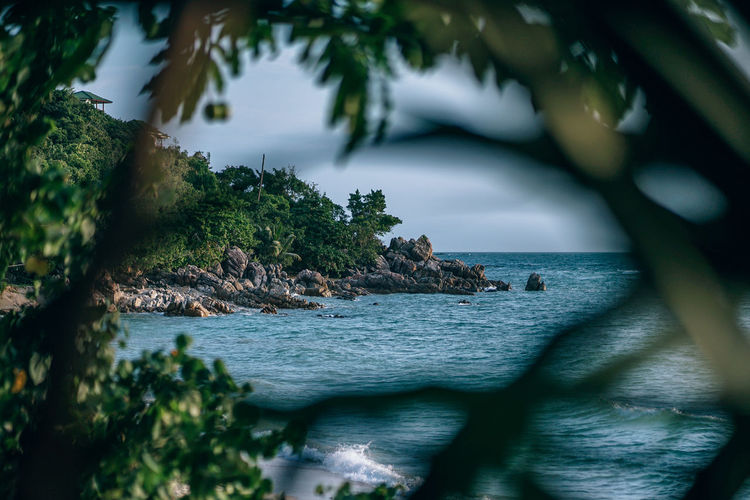 Beautiful beach photography. Beach seen through the trees and plants. Rocks and greenery at the beach. Sea waves splashing into rocks. Beautiful Koh Phangan Natural Nature Relaxing Vacations Backgrounds Beach Blue Coast Famous Place Island Lagoon Landscape Ocean Outdoors Photography Resort Sand Scenics secret garden Tourism Tropical Turquoise Wallpaper