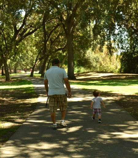 Tree Rear View Family With One Child Full Length Childhood Walking Togetherness Child Sunlight Family Adult People Casual Clothing Shadow Outdoors Day Love The Way Forward