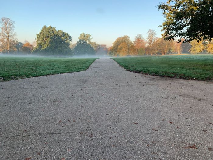 Across the park on a misty Sunday morning Misty Morning Park Plant Tree The Way Forward Road Sky Nature Direction No People Diminishing Perspective vanishing point Landscape Beauty In Nature Tranquility Outdoors Tranquil Scene