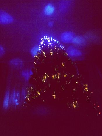 All The Neon Lights Lutsk Luts'k Winter 2016