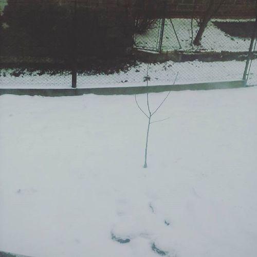 U kogo spadł śnieg?❄😊 Snow Ferie