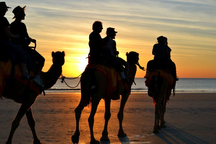 Sunset camel ride. Check This Out Gregoryphotography Australia Broome Travel Photography Like Cool