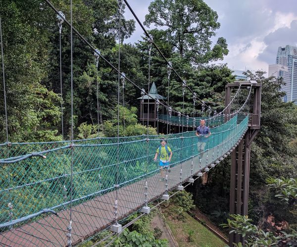 Going on a canopy walk with my family in Kuala Lumpur, February 2017. Canopy Walk Eco Tourism Family Fun Times Greenery KL TOWER Kuala Lumpur Malaysia  Leisure Activity Nature Outdoors Trees Trekking