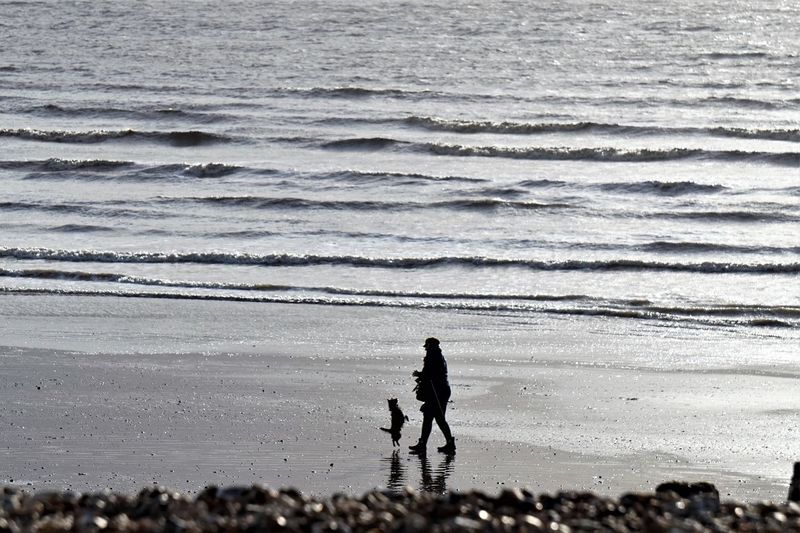 Silhouette person with dog walking at beach