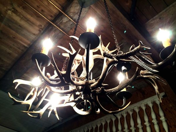 EyeEmNewHere Antler Chandelier Rethink Things