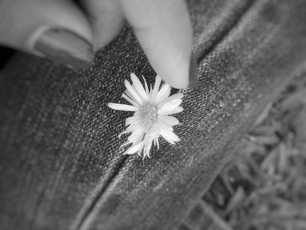En las cosas pequeñas te vuelvo a encontrar. 👣😍 Flower