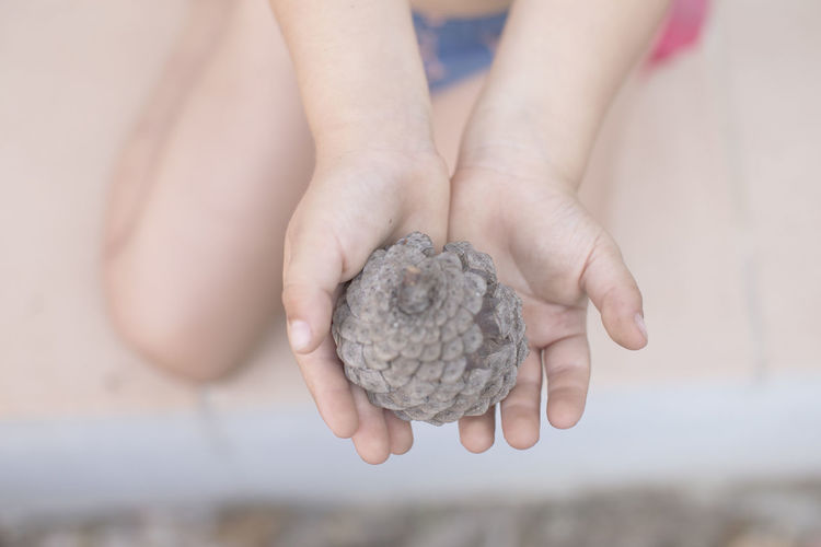Body Part Day Focus On Foreground Hand Holding Human Body Part Human Hand Lifestyles Nature One Person Outdoors Real People Selective Focus Unrecognizable Person